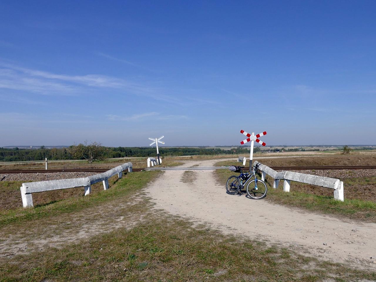293_rower.JPG