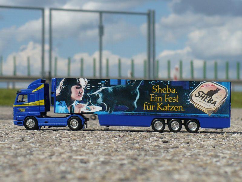 3.3 Rigterink Scania 143M 3 [800x600].JPG