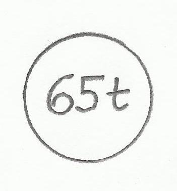 65t.jpg