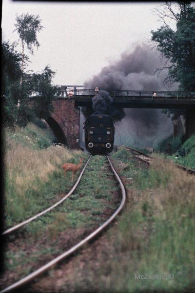 AA053-Wolsztyn1991.jpg