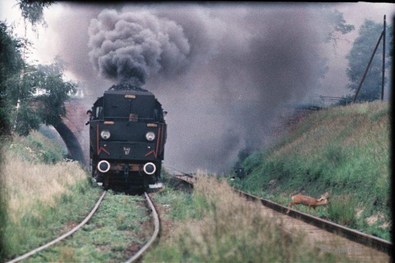 AA055-Wolsztyn1991.jpg