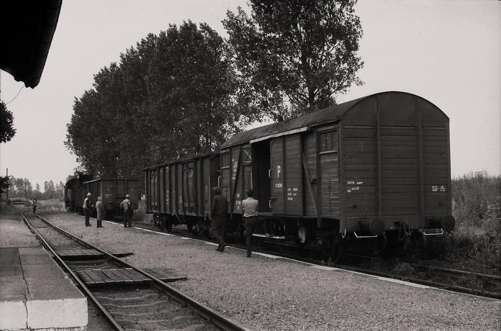 anstzen-der-gueterwagen-an-den-zug-46118a1a-3c1c-4960-87b7-eb52d3eb5d98.jpg