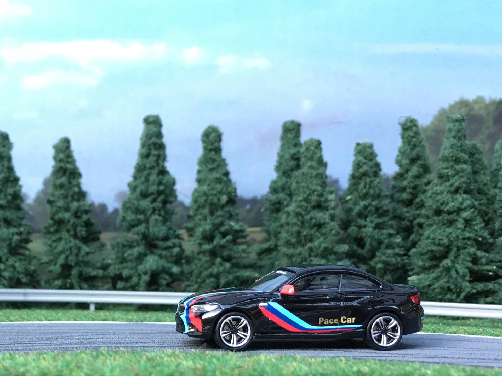 BMW M2 Pace car 001.jpg