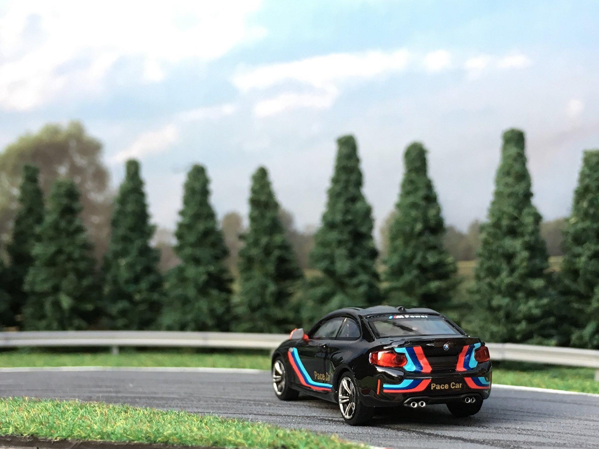 BMW M2 Pace car 002.jpg