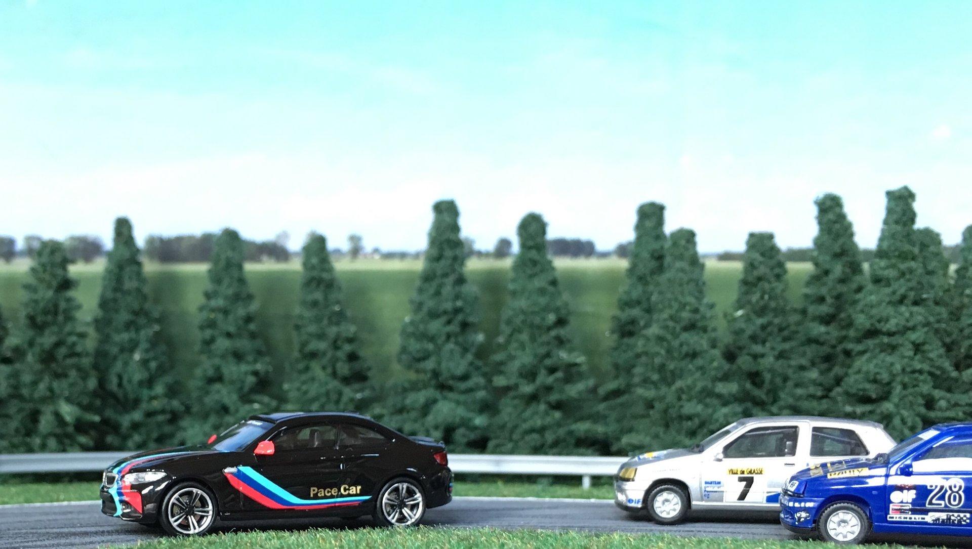 BMW M2 Pace car 006.jpg