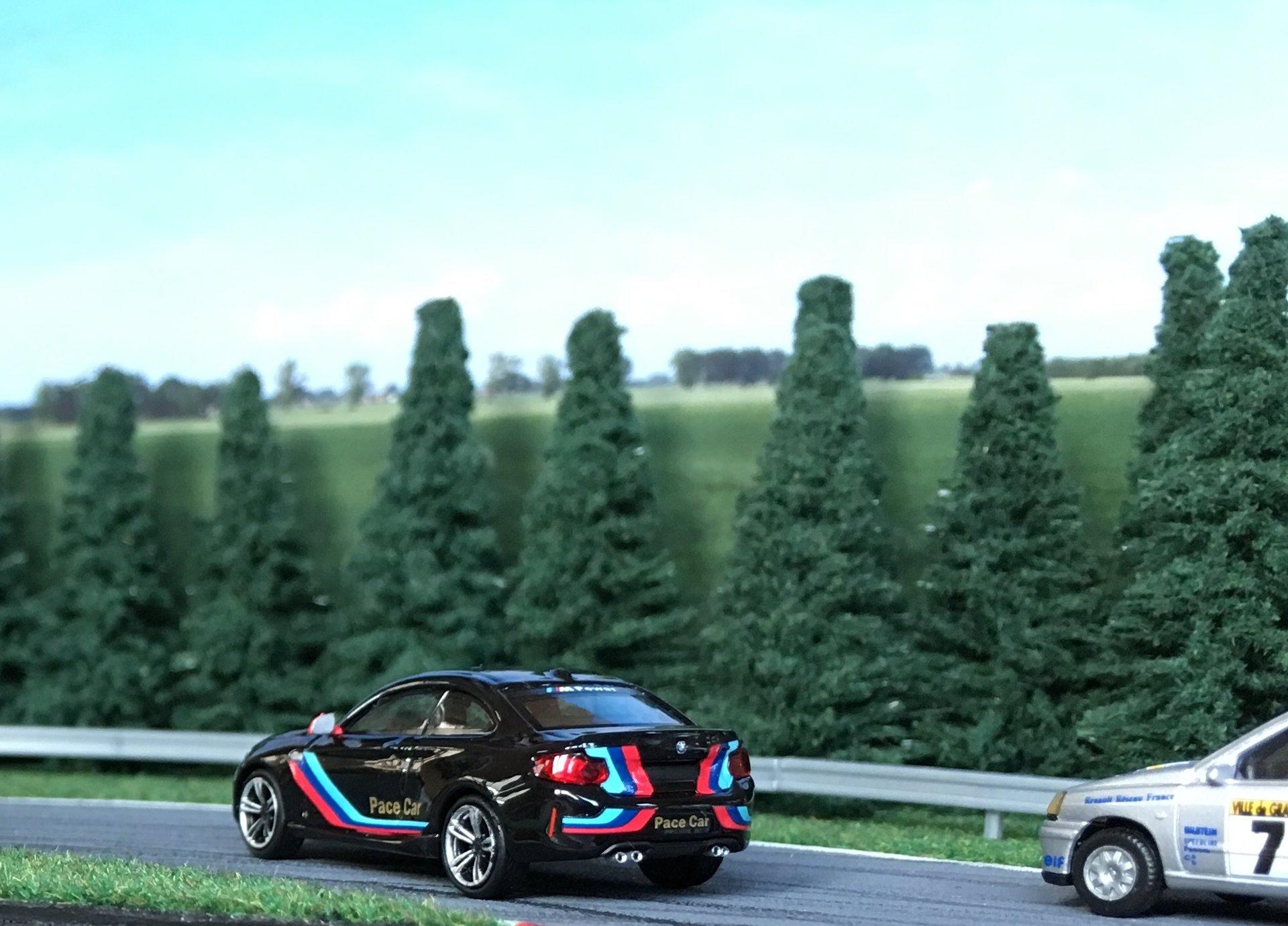 BMW M2 Pace car 007.jpg