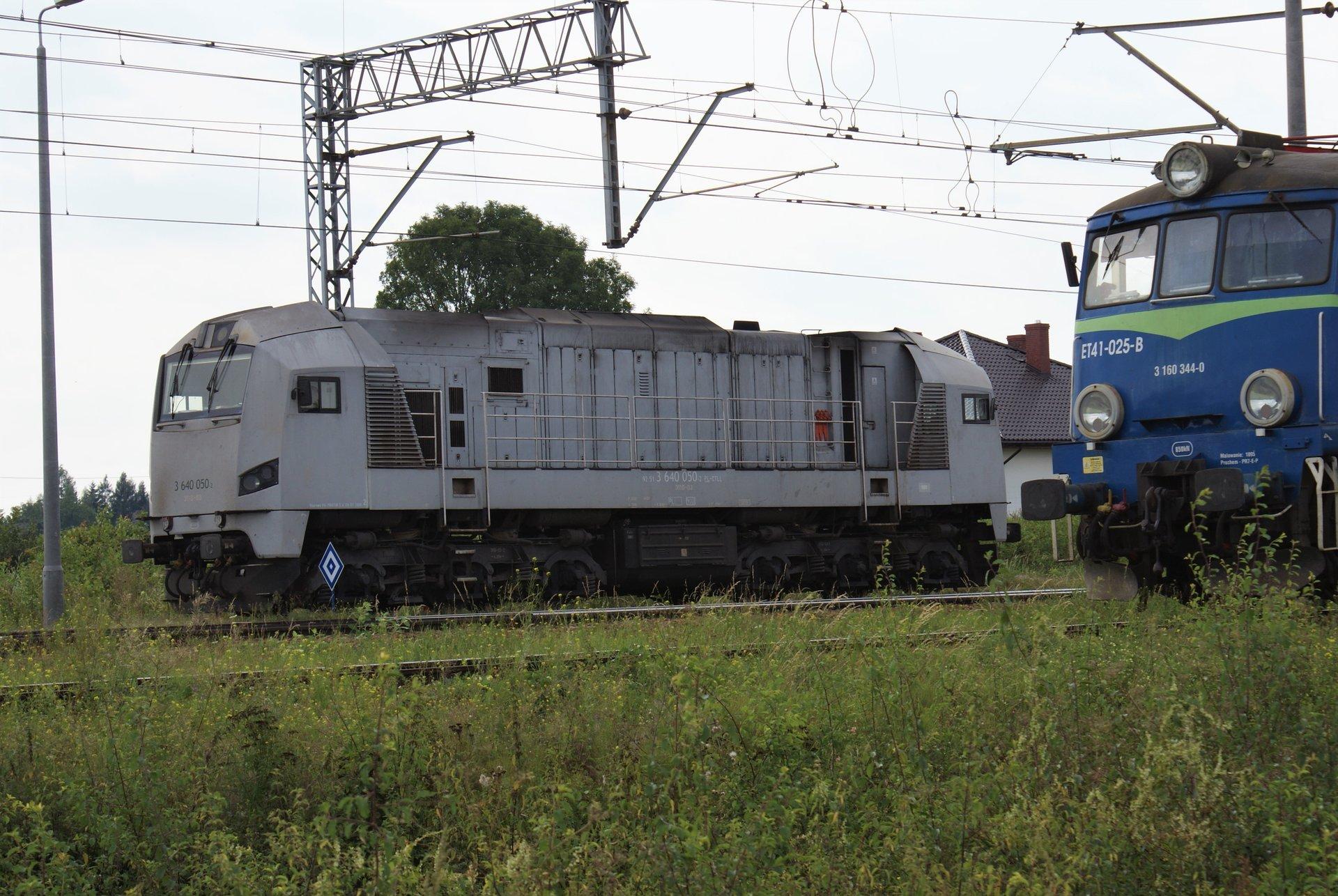 DSC02468 (2).JPG