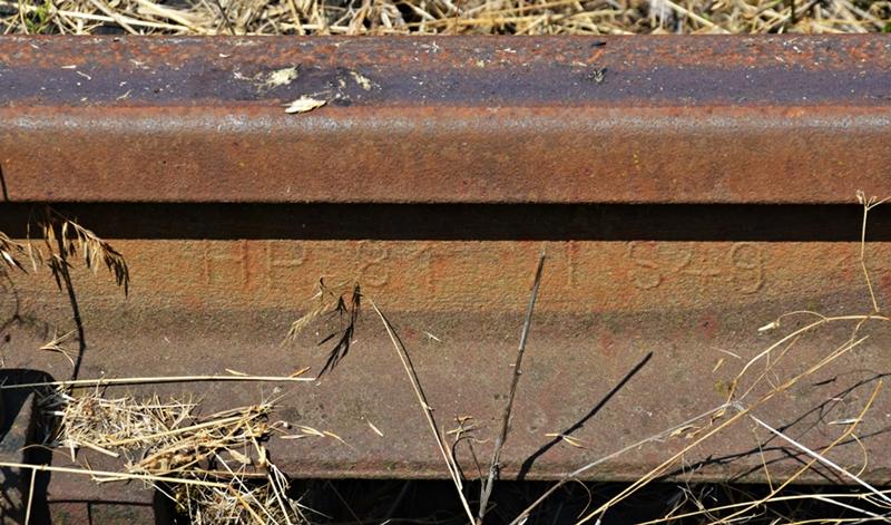 DSC_0041-crop.JPG