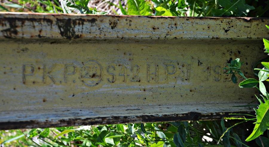 DSC_0135-crop.JPG