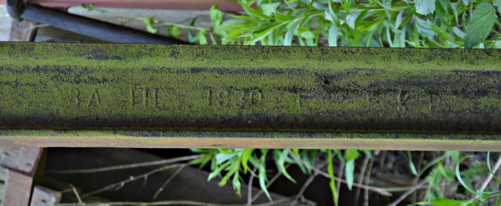 DSC_0223-crop.JPG