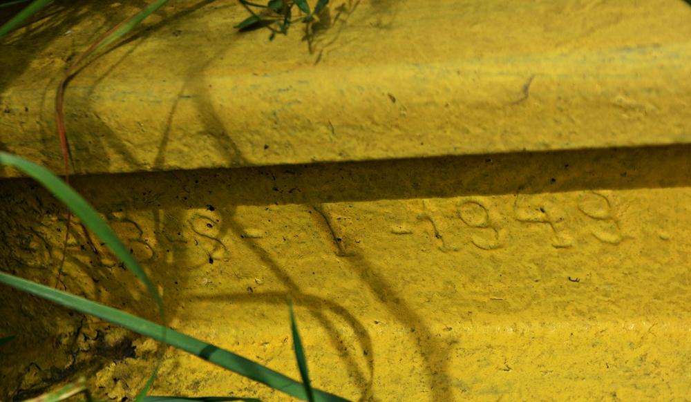 DSC_0922-crop.JPG