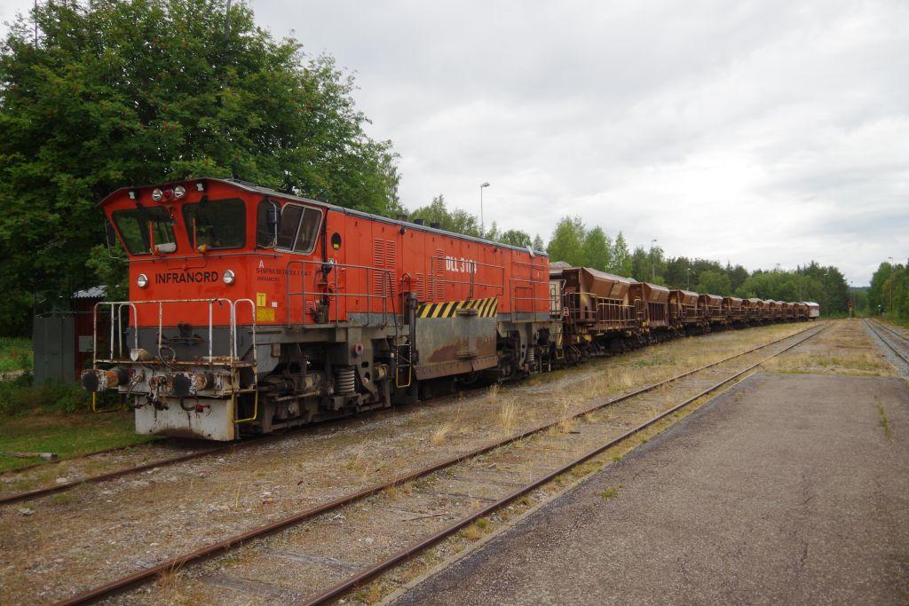 IMGP3537.JPG