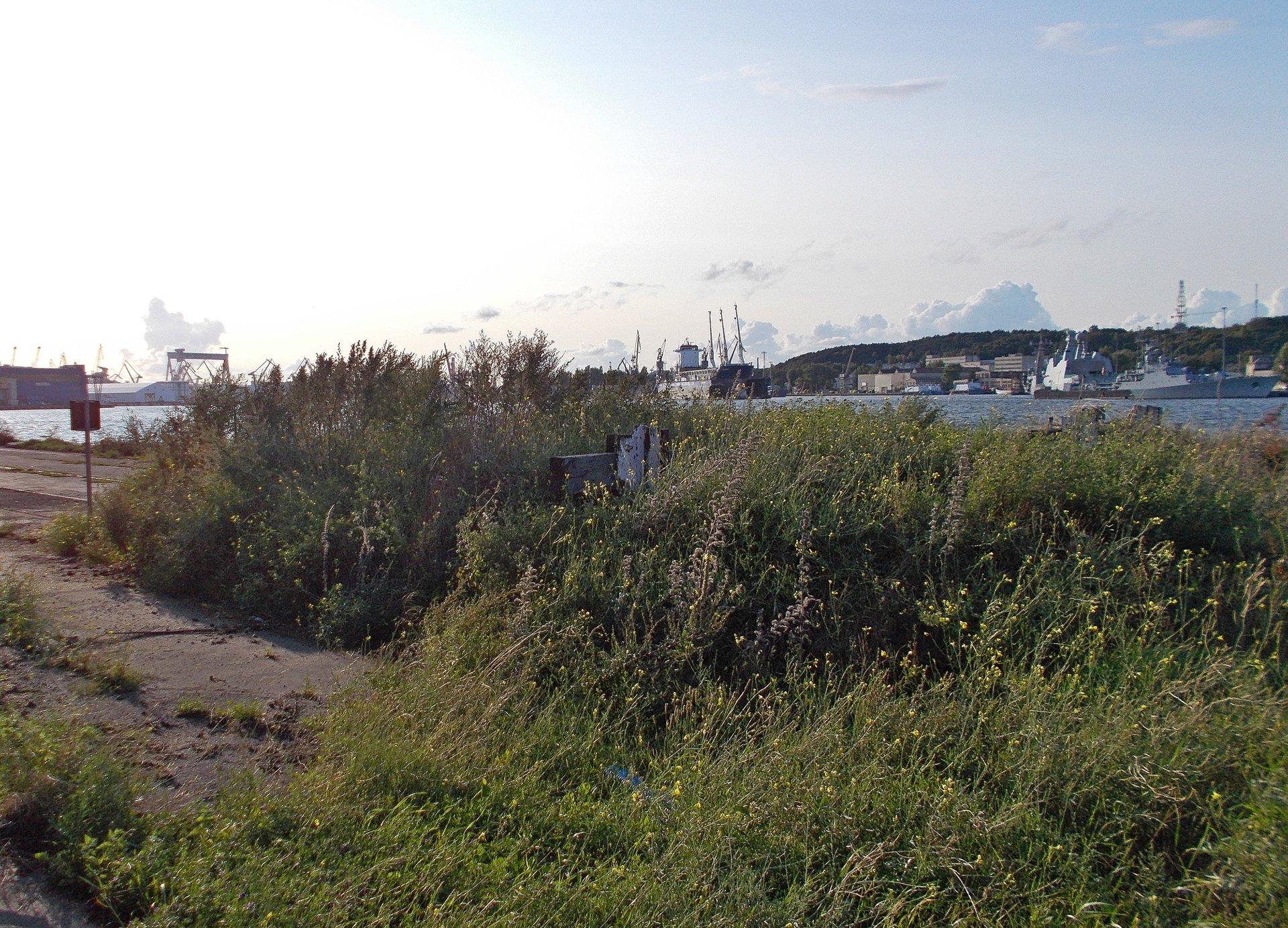 Kozły oporowe, Gdynia Port, 25.08.2018 (1).jpg