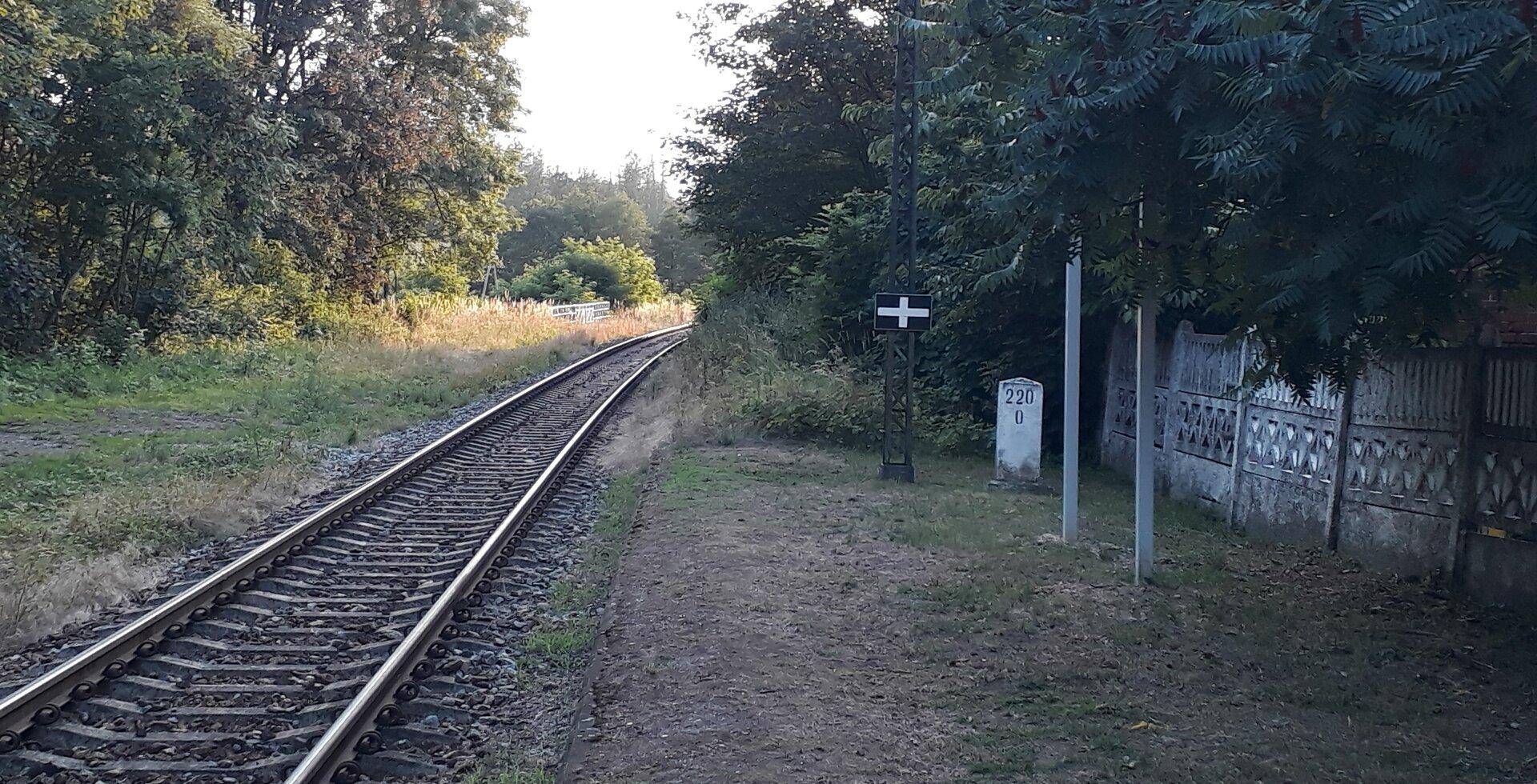 Krzyzowa_220_0.jpg