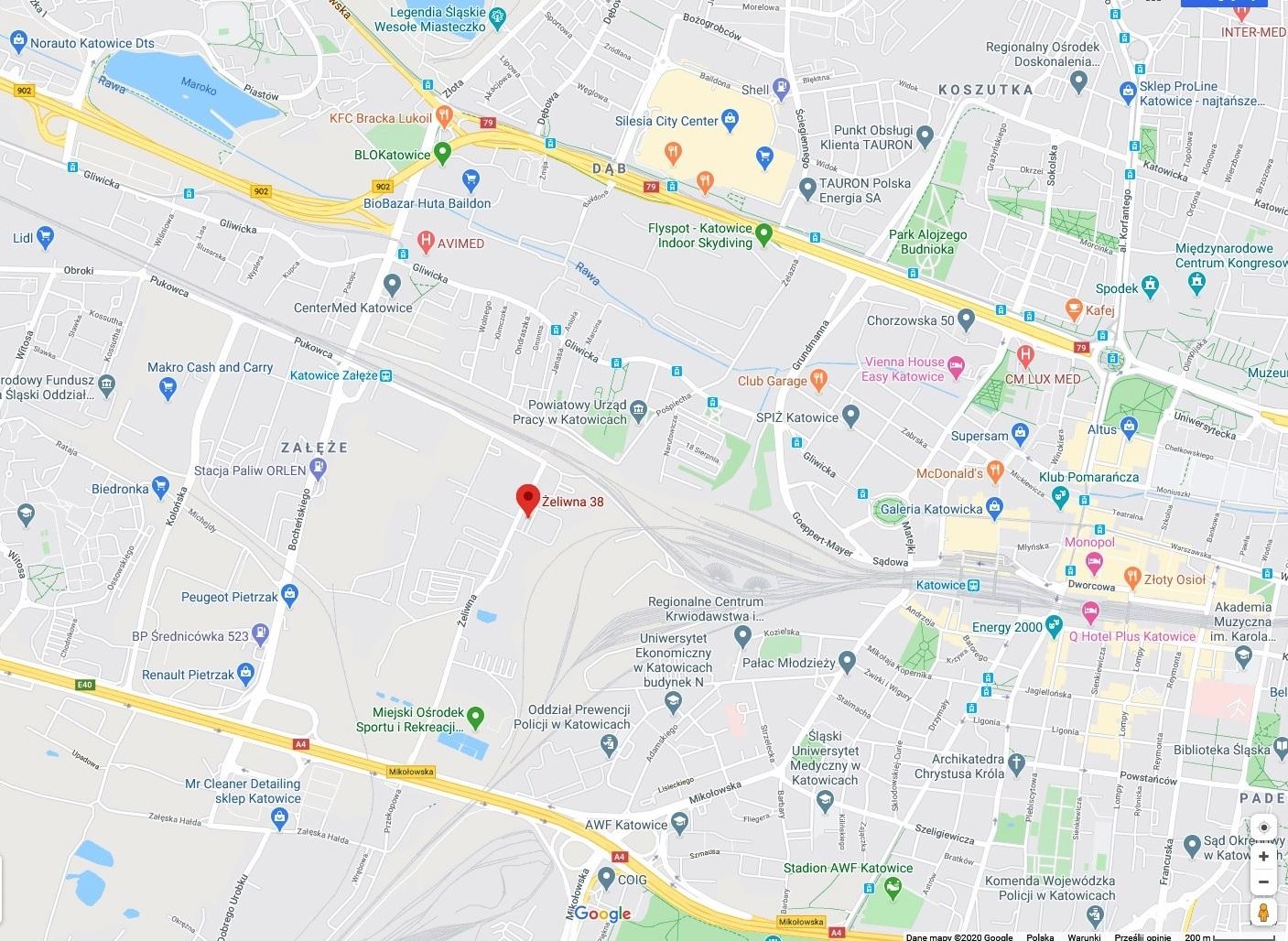 mapa_żeliwna38.jpg