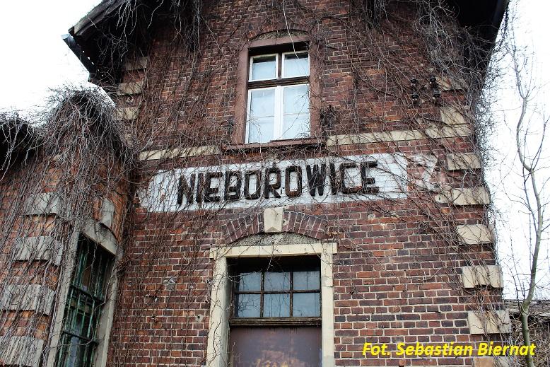 Nieborowice 3.JPG