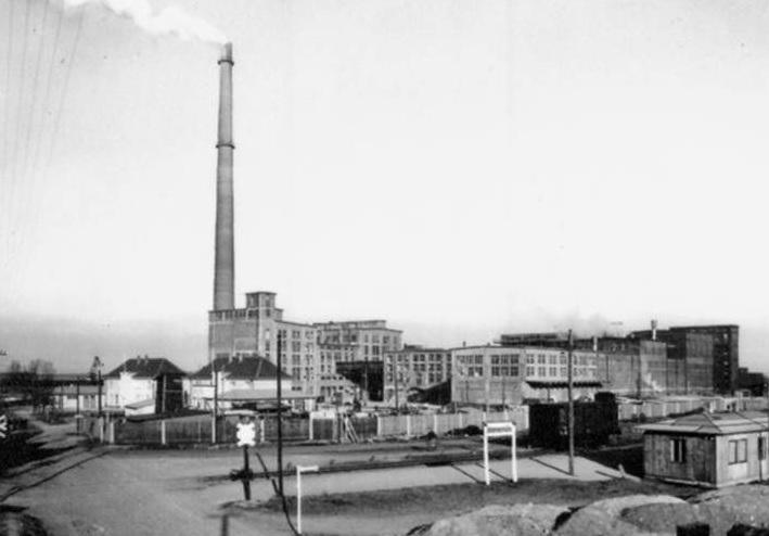 osinów dolny fabryka celulozy www_chojna24_pl.jpg