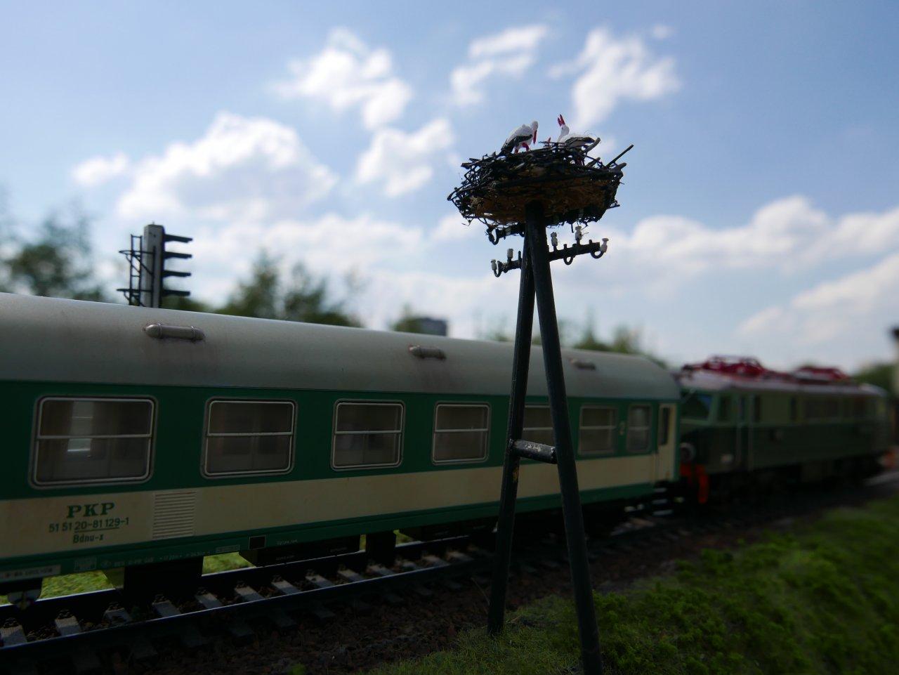 P1000156.JPG