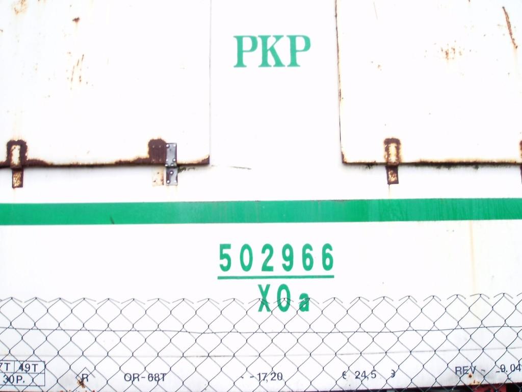 P1010136.jpg