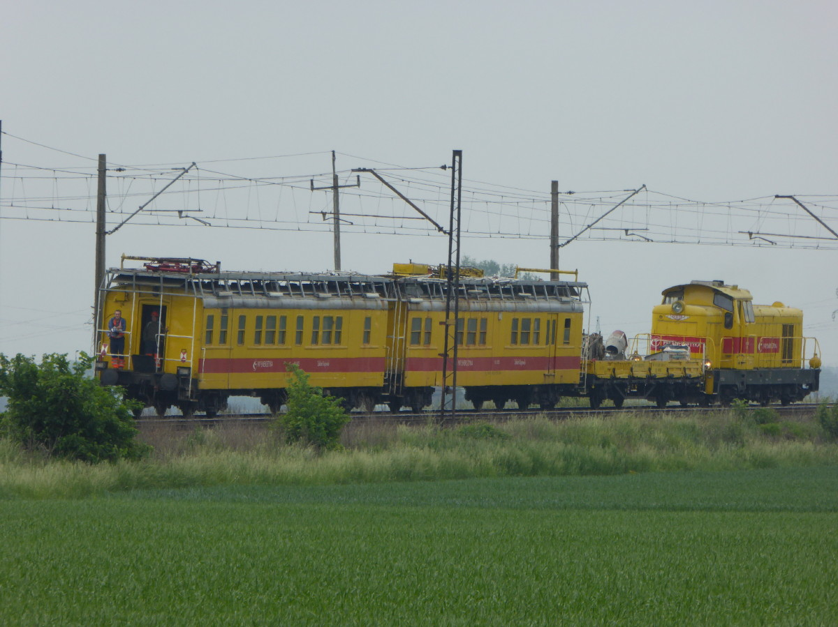 P1030488_1.JPG