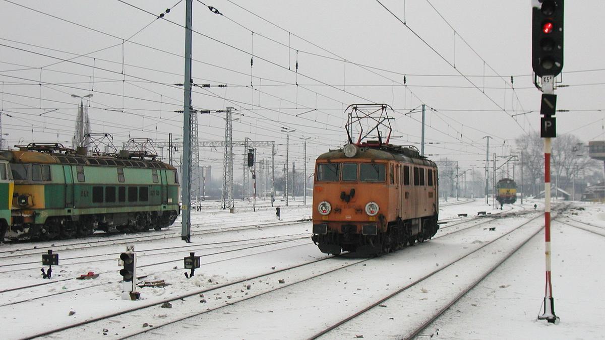 P1050008.JPG