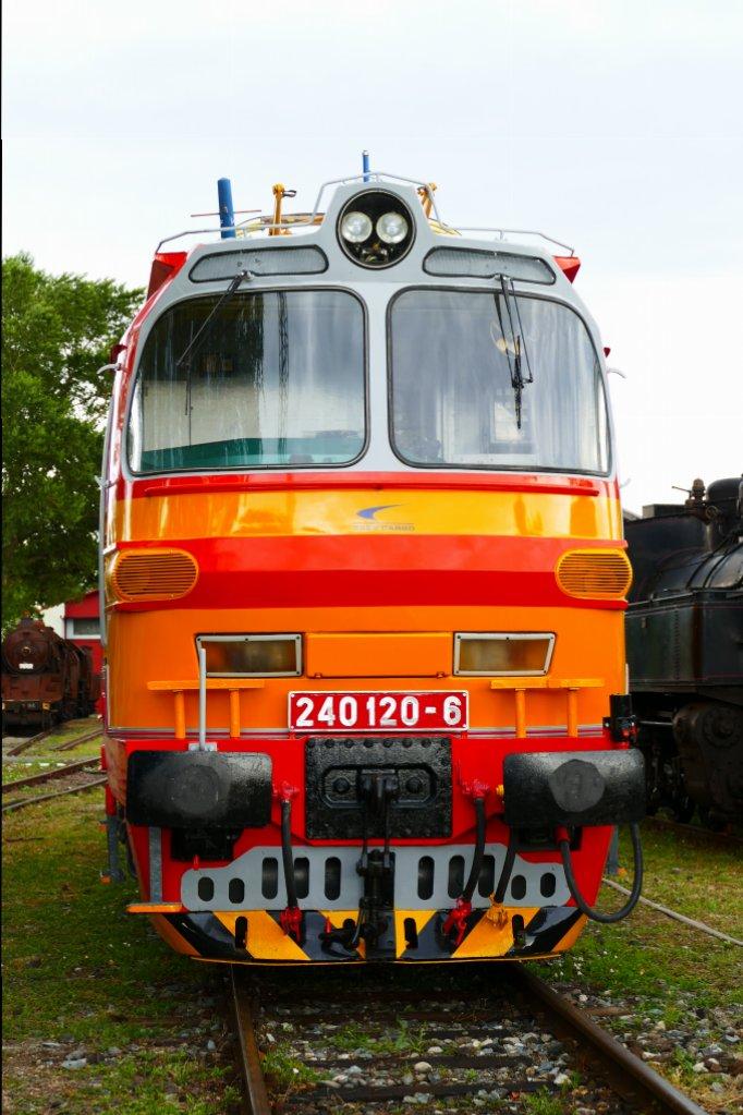 P1140666.JPG