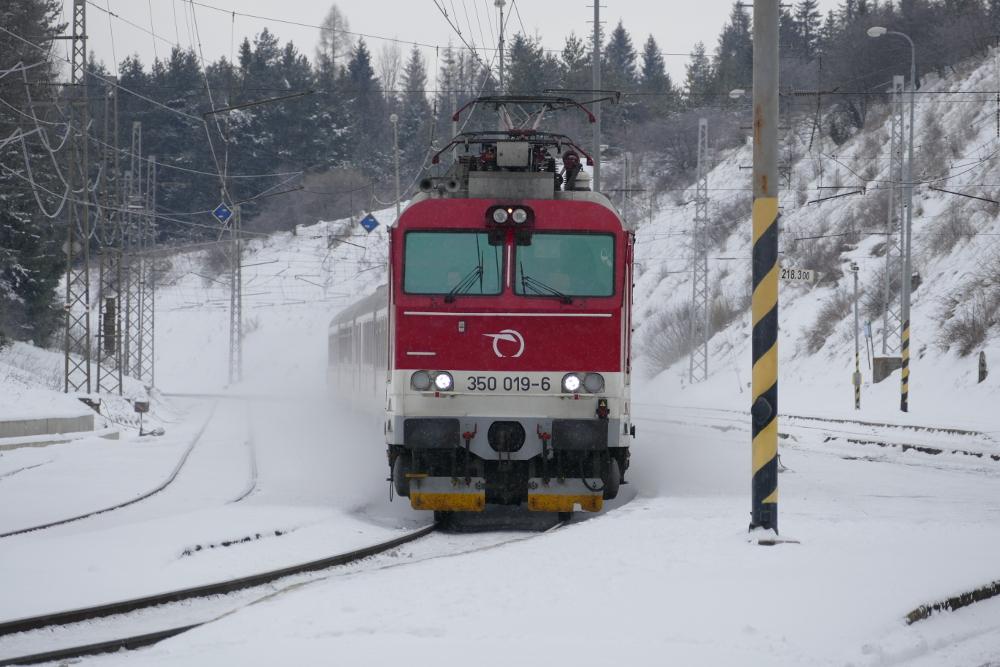 P1290041.JPG