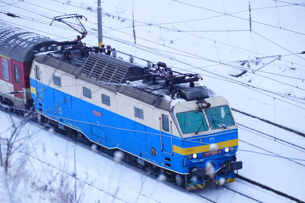 P1290104.JPG