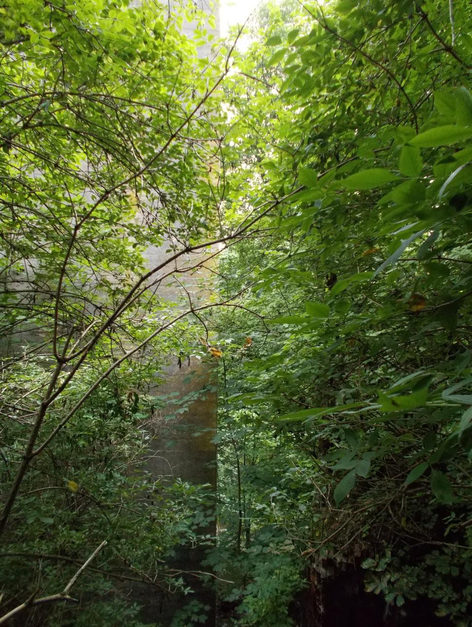 Pieniężno, most na Wałszy, stary filar leżący na ziemi (1).jpg