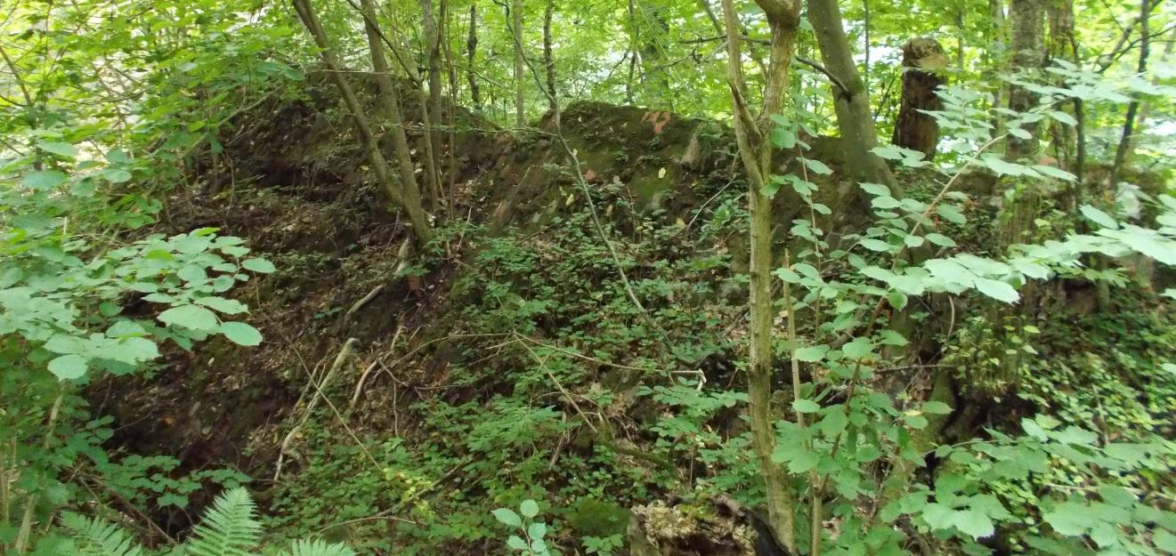 Pieniężno, most na Wałszy, stary filar leżący na ziemi (3).jpg