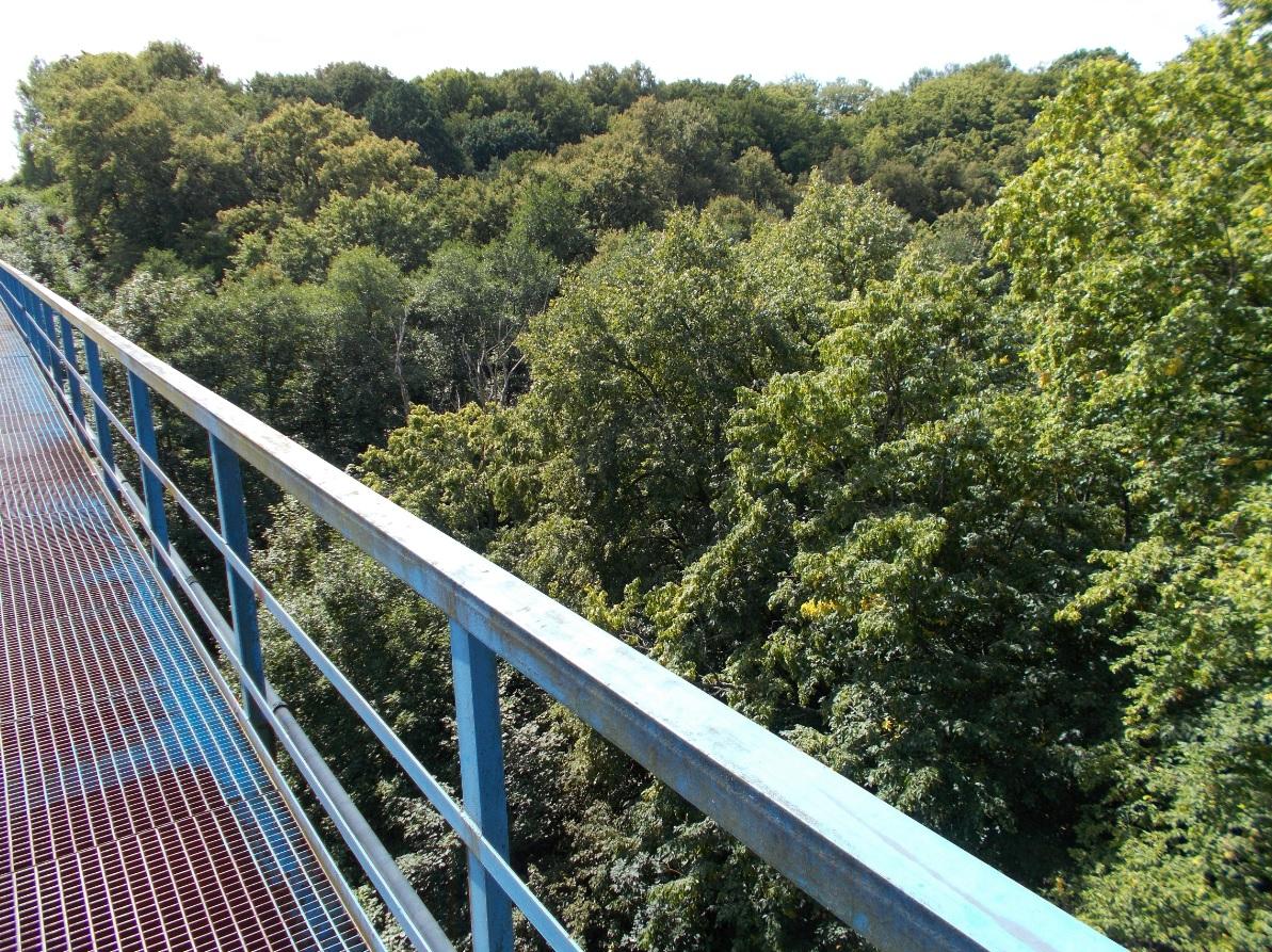 Pieniężno, most na Wałszy, widok w kierunku zachodnim (2).jpg