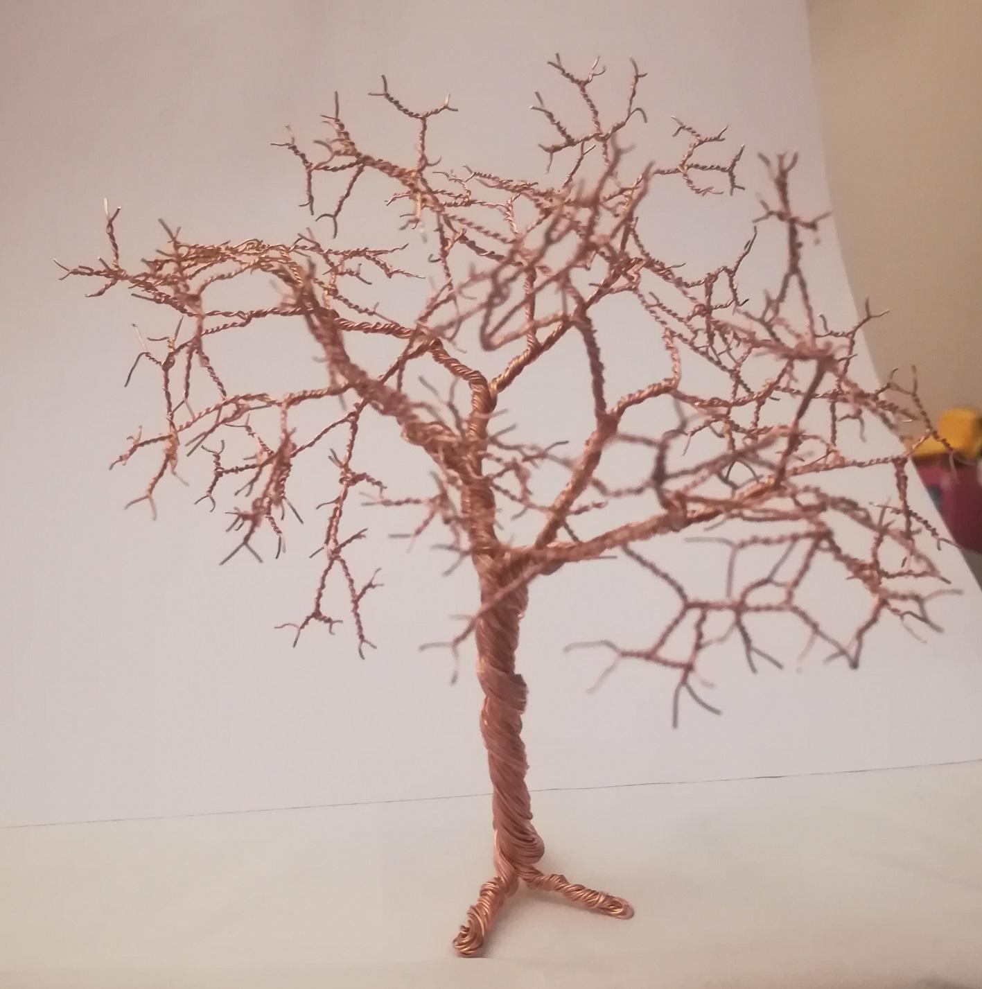pierwsze drzewko (1).jpg