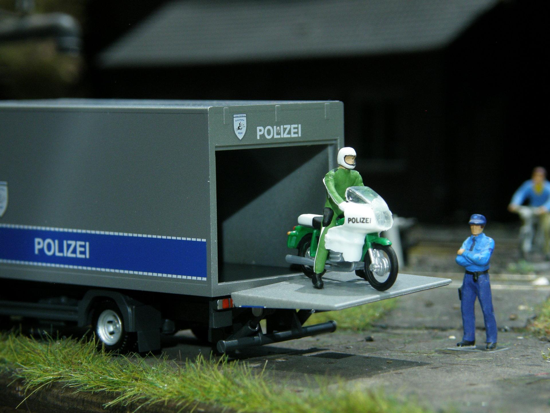 pol 007.JPG