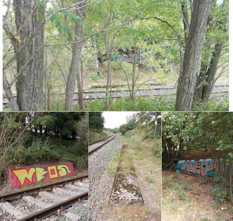 Relikty pozostałości wiaduktu drogowego przed Swobodną, w km. 16.2 linii Gutkowo - Braniewo.jpg
