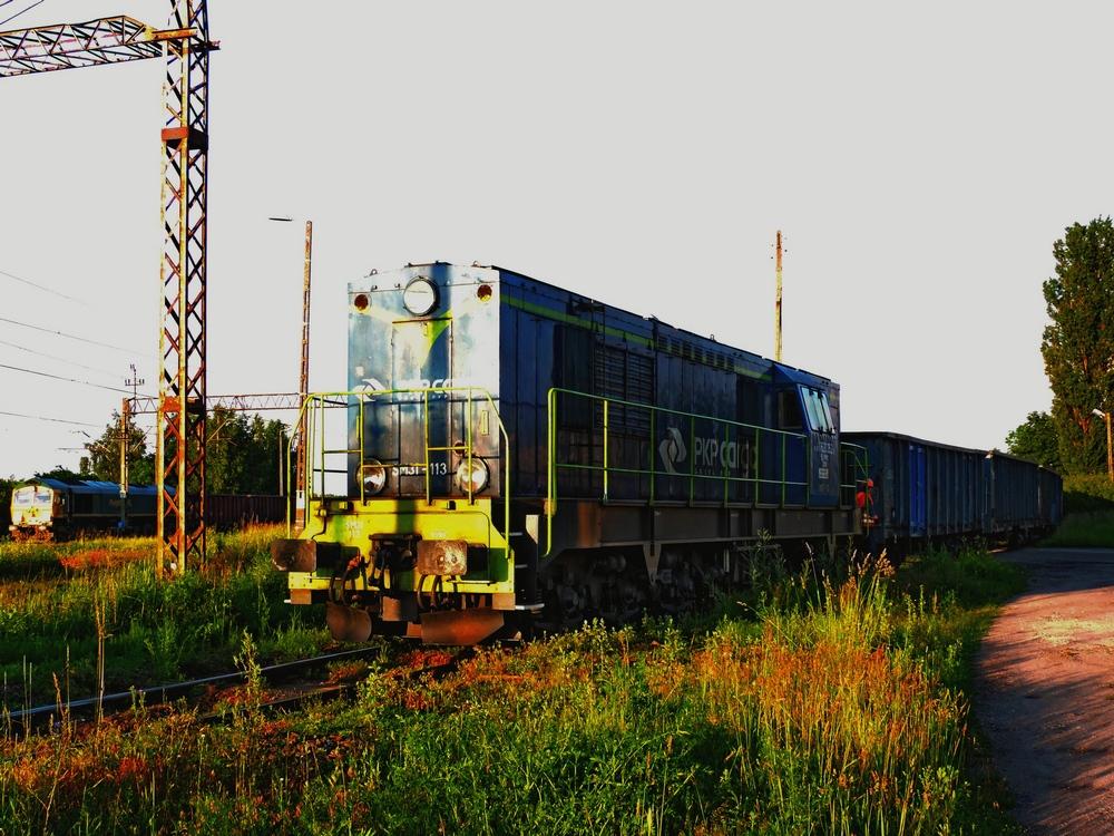 SM31-113.jpg