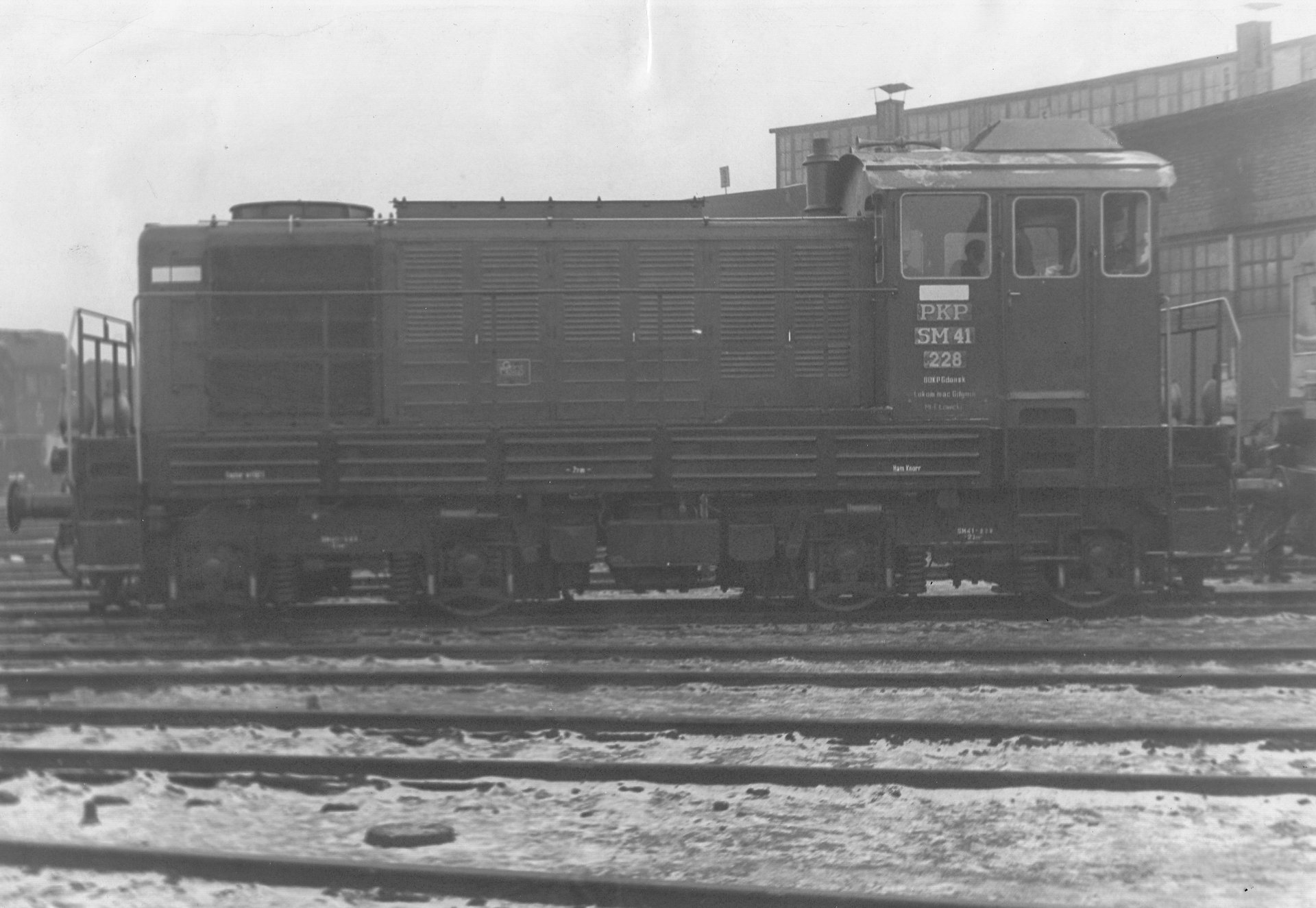 SM41-228.jpg