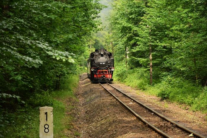 Stromo na podjeździe do Jonsdorf.JPG
