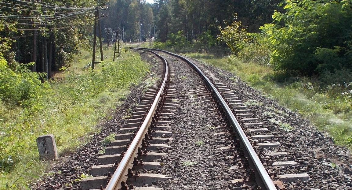 Tor szlakowy, Linia nr 221 Gutkowo - Braniewo, odcinek Gutkowo - Bukwałd, kilometraż 2.4.jpg