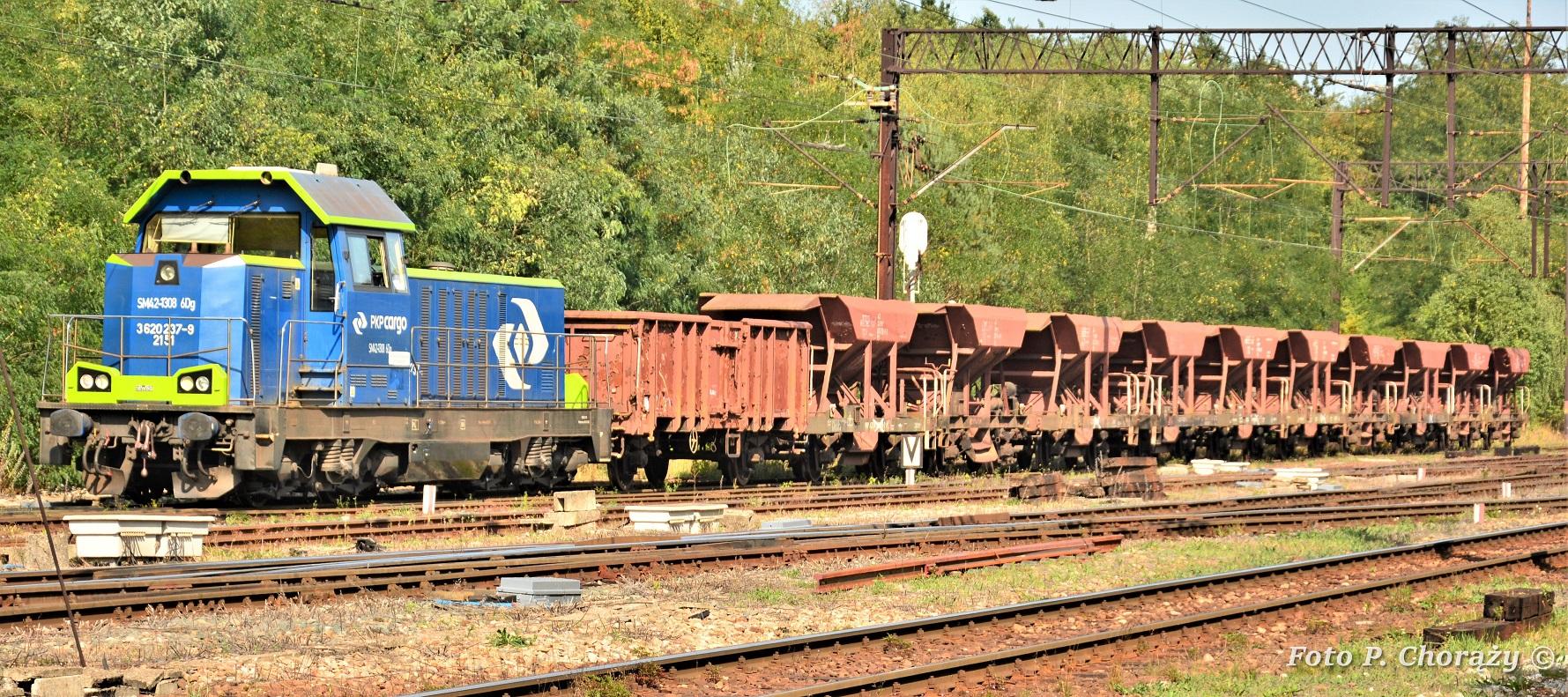 wagony .jpg