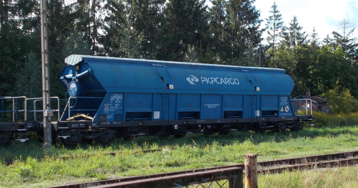 Wagony typu 430S (Tadds) na stacji Dobre Miasto 03.09.2019 (3).jpg