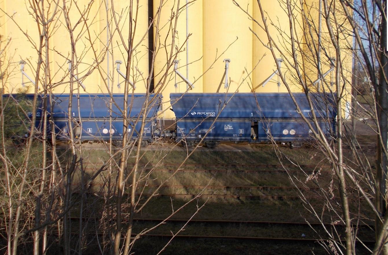 Wagony typu 441Vb (Talns) na stacji Dobre Miasto 29.11.2018.jpg