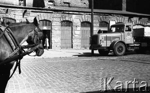 Warszawa 09.1958 Fot. R. Broniarek_064-15.jpg