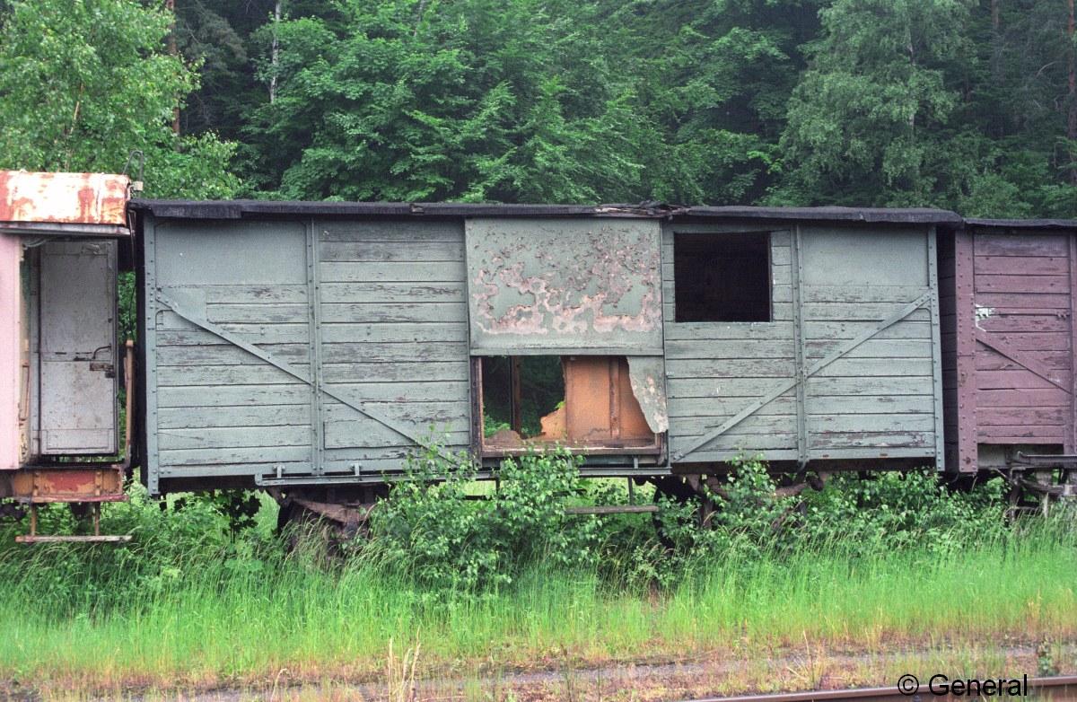 wczasy wagonowe jedlina 1997  006.jpg