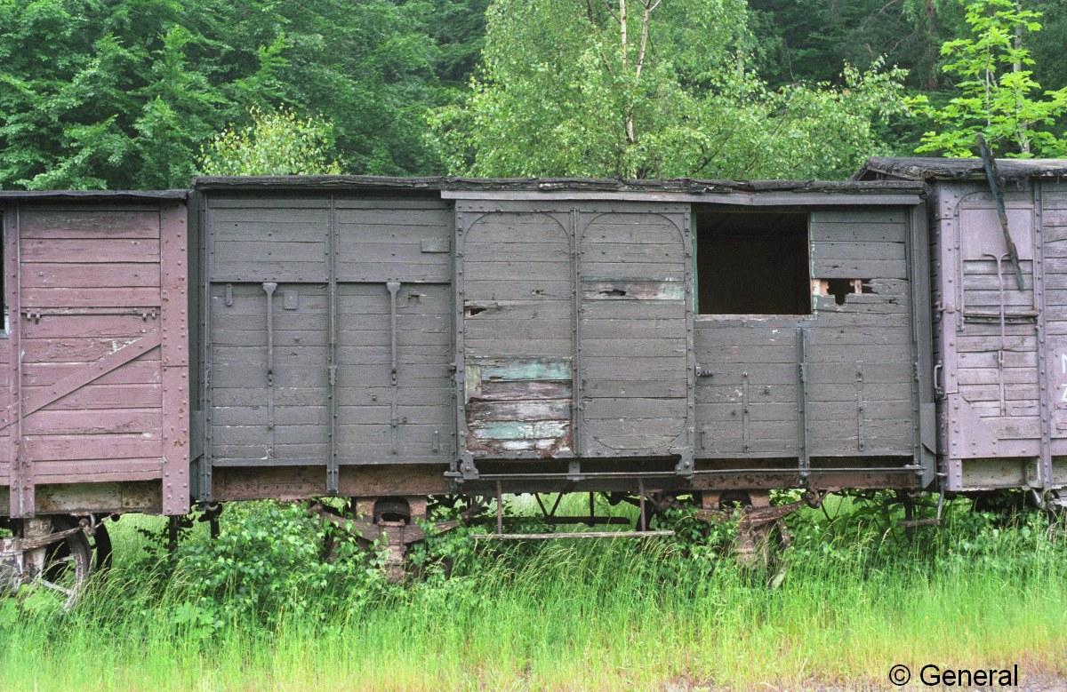 wczasy wagonowe jedlina 1997  008.jpg