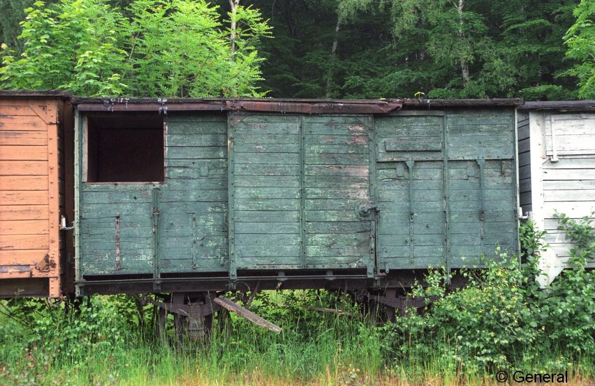 wczasy wagonowe jedlina 1997  012.jpg
