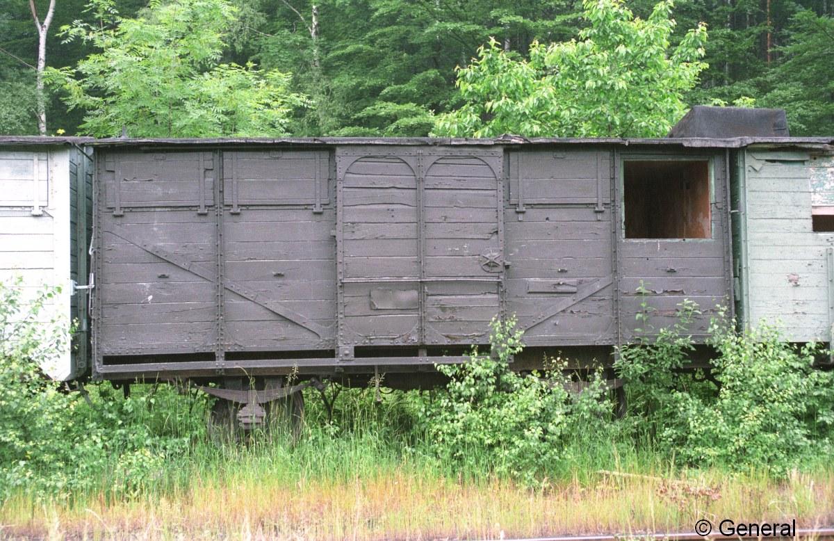 wczasy wagonowe jedlina 1997  014.jpg
