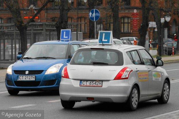 z13132360Q,Samochody-nauki-jazdy-na-torunskich-ulicach.jpg