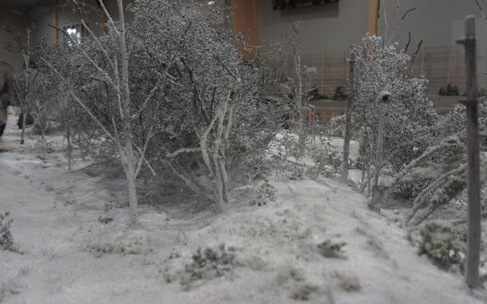 Zimowy Arturów 2.jpg