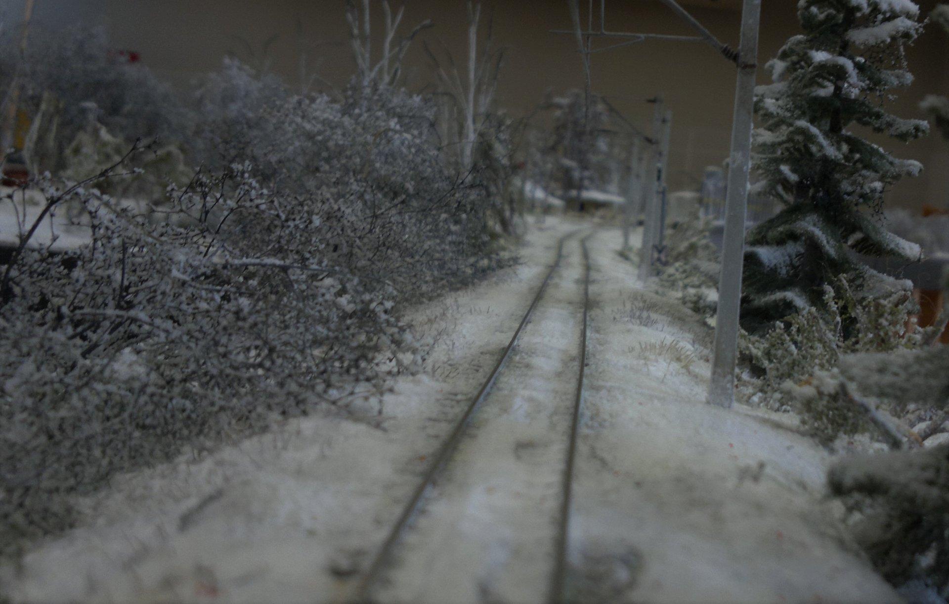Zimowy szlak pochmurny.jpg